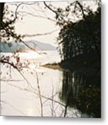 Haven Of Trees Metal Print by Kicking Bear  Productions