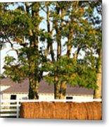 Hay Bales And Trees Metal Print by Todd A Blanchard