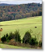 Heart Of The Country Metal Print by Jan Amiss Photography