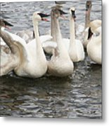 Hey Listen Up Metal Print by Laurie With