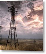 Highwire Metal Print by Alina Davis