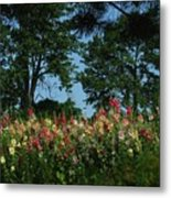 Hollyhocks And Trees Metal Print by Michael L Kimble