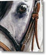 Horse Head Metal Print by Nadi Spencer