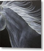 Horse Metal Print by Susan Clausen