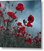 Hot Cold Contrast 1 Metal Print by Floriana Barbu