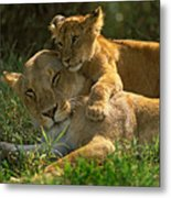 I Love My Mother Metal Print by Johan Elzenga