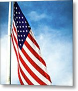 I Pledge Allegiance Metal Print by Shelby  Young
