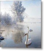 Icy Swan Lake Metal Print by E.M. van Nuil