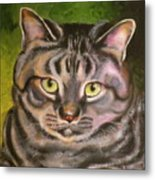 Im Your Man Tabby Metal Print by Susan A Becker