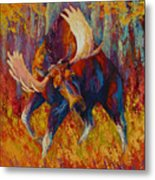 Imminent Charge - Bull Moose Metal Print by Marion Rose