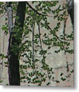 Impression Of Wall And Trees Metal Print by Lenore Senior
