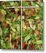 In The Fall Metal Print by Deborah Montana