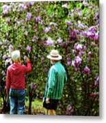 In The Lilac Garden Metal Print by Susan Savad