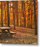 In The Park Metal Print by Kathy Jennings