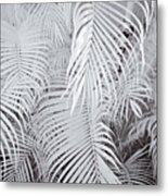 Infrared Palm Abstract Metal Print by Adam Romanowicz