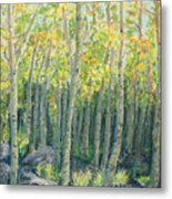 Into The Aspens Metal Print by Mary Benke