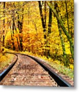Into The Forest Metal Print by Kathy Jennings