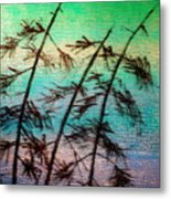 Into The Wind Metal Print by Rick Silas