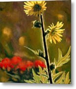 July Afternoon-compass Plant Metal Print by Bruce Morrison