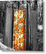 Jungle Shower Metal Print by RC Photography