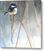 Just Thinking Metal Print by Patricia Pushaw