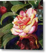 Karma Camellia Metal Print by Andrew King
