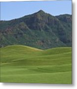 Kauai Marriott Golf Cours Metal Print by William Waterfall - Printscapes