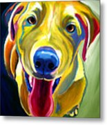 Lab - Spencer Metal Print by Alicia VanNoy Call