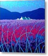 Lavender Scape Metal Print by John  Nolan