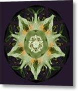 Leafy Mandala Metal Print by Rene Crystal