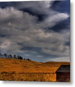 Leaving The Shed Metal Print by David Patterson