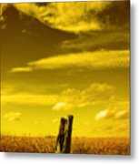 Left Alone Metal Print by Cathy  Beharriell