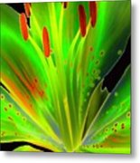 Lime Twist Metal Print by Diane E Berry