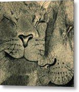 Lions In Love Metal Print by Ramneek Narang
