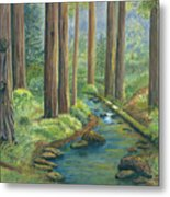 Little Stream In The Woods Metal Print by Vidyut Singhal