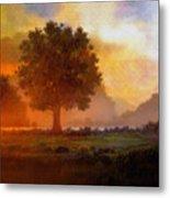 Lone Tree Metal Print by Robert Foster