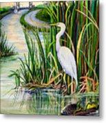 Louisiana Wetlands Metal Print by Elaine Hodges