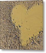 Love In A Muddy Puddle Metal Print by Meirion Matthias