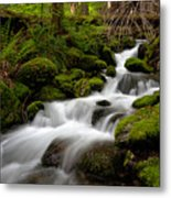 Lush Stream Metal Print by Mike Reid