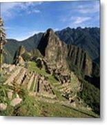 Machu Picchu And Bromeliad Metal Print by James Brunker