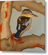 Magnificent Blue-winged Kookaburra Metal Print by Brian Leverton