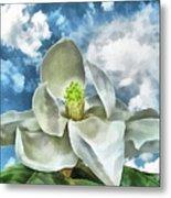 Magnolia Dreams Metal Print by Wendy J St Christopher