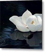 Magnolia Metal Print by Kendra Longfellow