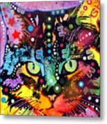 Maine Coon Metal Print by Dean Russo