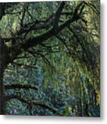 Majestic Weeping Willow Metal Print by Marion McCristall