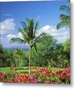 Makena Beach Golf Course Metal Print by Peter French - Printscapes