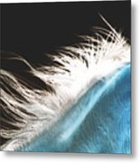 Mane Beauty Metal Print by ELA-EquusArt