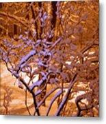 Midnight Snow Metal Print by Ellen Andrews