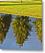 Mirroring Trees Metal Print by Heiko Koehrer-Wagner