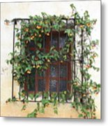 Mission Window With Yellow Flowers Metal Print by Carol Groenen